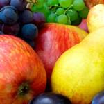 ¡Las mejores frutas de temporada del otoño! Come rico y de calidad en nuestro restaurante clásico y tradicional