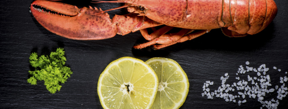 donde comer buen marisco en gijon